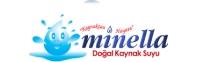 daynex e-ticaret logo